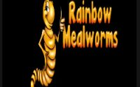 Rainbow Mealworms hours